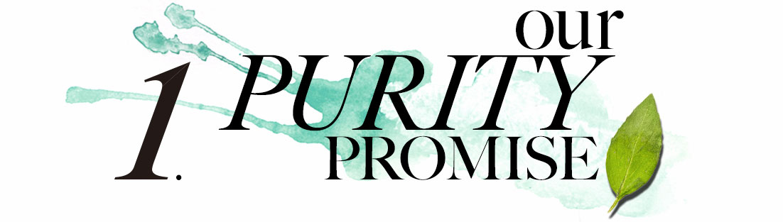 1. Our Purity Promise